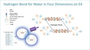 Hydrogen Bond for Water in Four Dimensions on E4