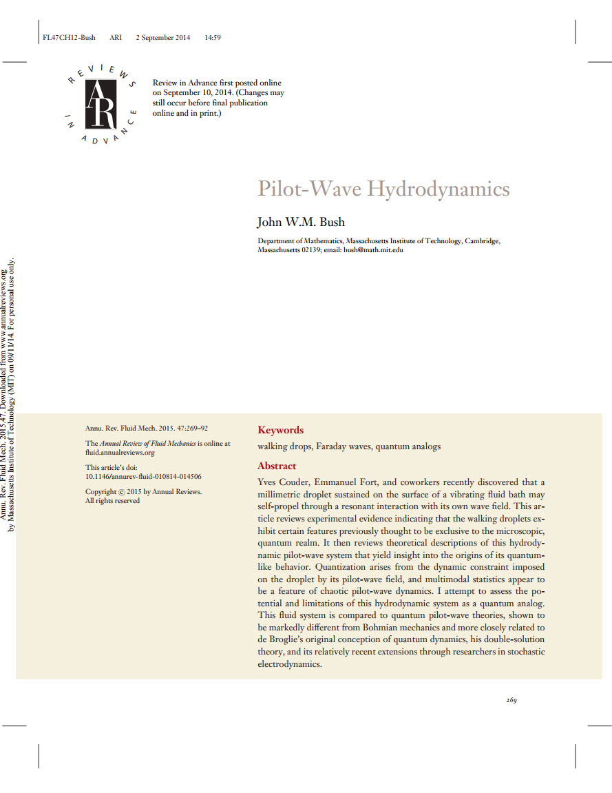 Pilot-Wave Hydrodynamics