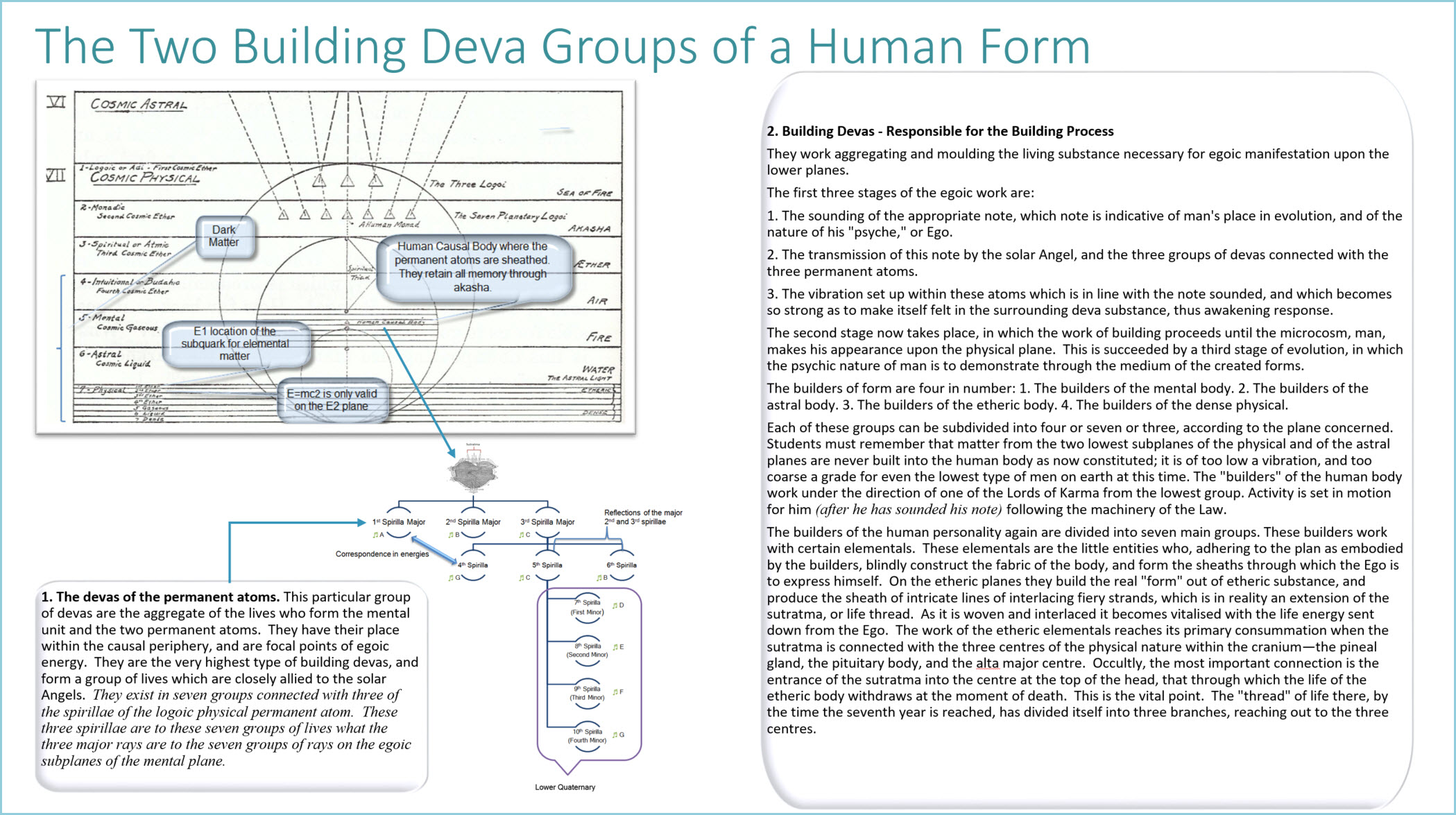 The Two Building Deva Groups of a Human Form