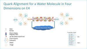 Quark Alignment for a Water Molecule in Four Dimensions on E4