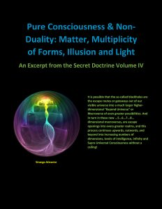 Pure Consciousness & Non-Duality: Matter, Multiplicity of Forms, Illusion and Light